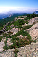 This is a southerly view from Gorham Mountain in Acadia National Park in Maine.