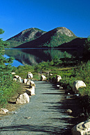 This shows the path that leads from the Jordan Pond Restaurant to Jordan Pond.
