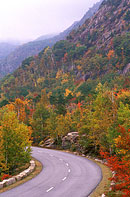 Acadia's Park Loop Road during the Fall Season